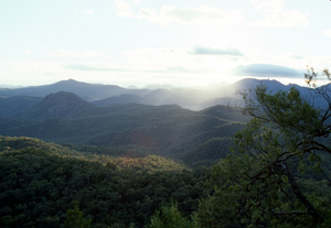 Early Morning at the Warrumbungles