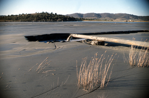 Tailings Outflow for the Woodlawn Mine
