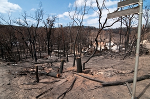 Burnt trees and property at Strathewen after the 'Black Saturday' bushfires