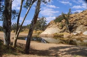 Australian Landscape.