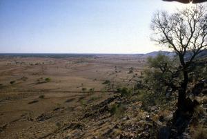 Central Australian landscape.