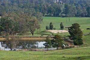 View across farm