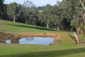 A farm dam