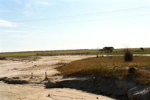 An Area Affected by Salinity