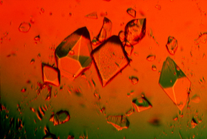 Protein Crystals for Use in Experiments
