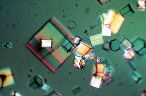 X-Ray Crystallography Protein Crystals