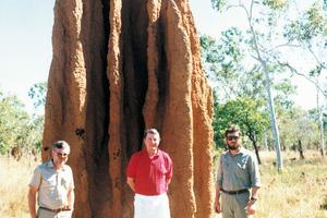 A Termite Mound in Kakadu