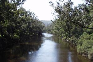 Blackwood River Balingup WA