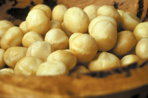 CSIRO has identified the 'ideal' macadamia preferred by consumers