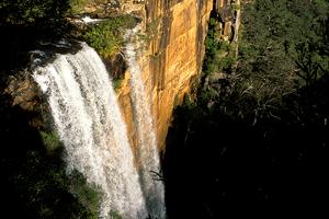 Fitzroy Falls near Moss Vale, NSW. 1998.