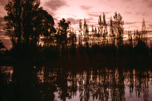Early evening along the main canal, Griffith. NSW.