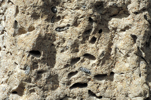 Detail of termite mound, near Pentland, QLD.