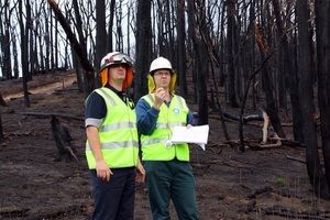 CSIRO researchers conducting bushfire research at Strathewen, four months after the 'Black Saturday' bushfires