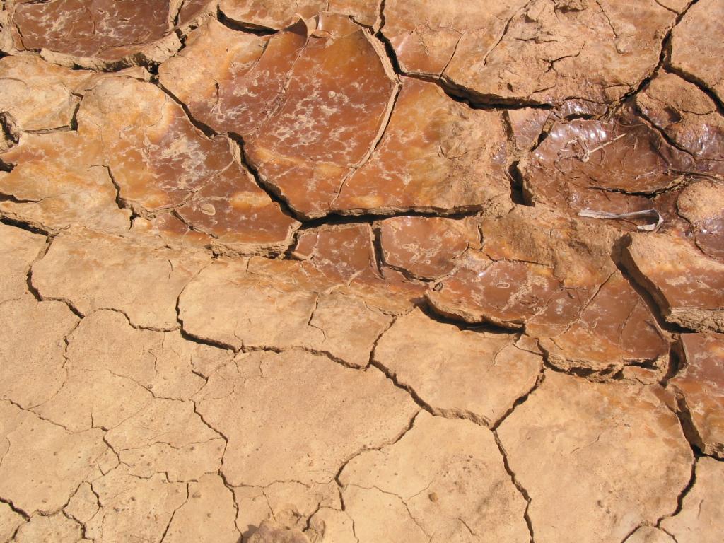 http://www.scienceimage.csiro.au/mediarelease/images/cracked_soil.jpg